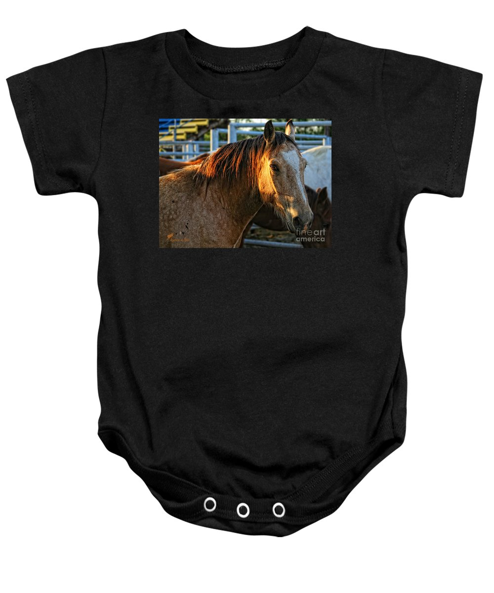 Texas Baby Onesie featuring the photograph Never Brushed by Karen White