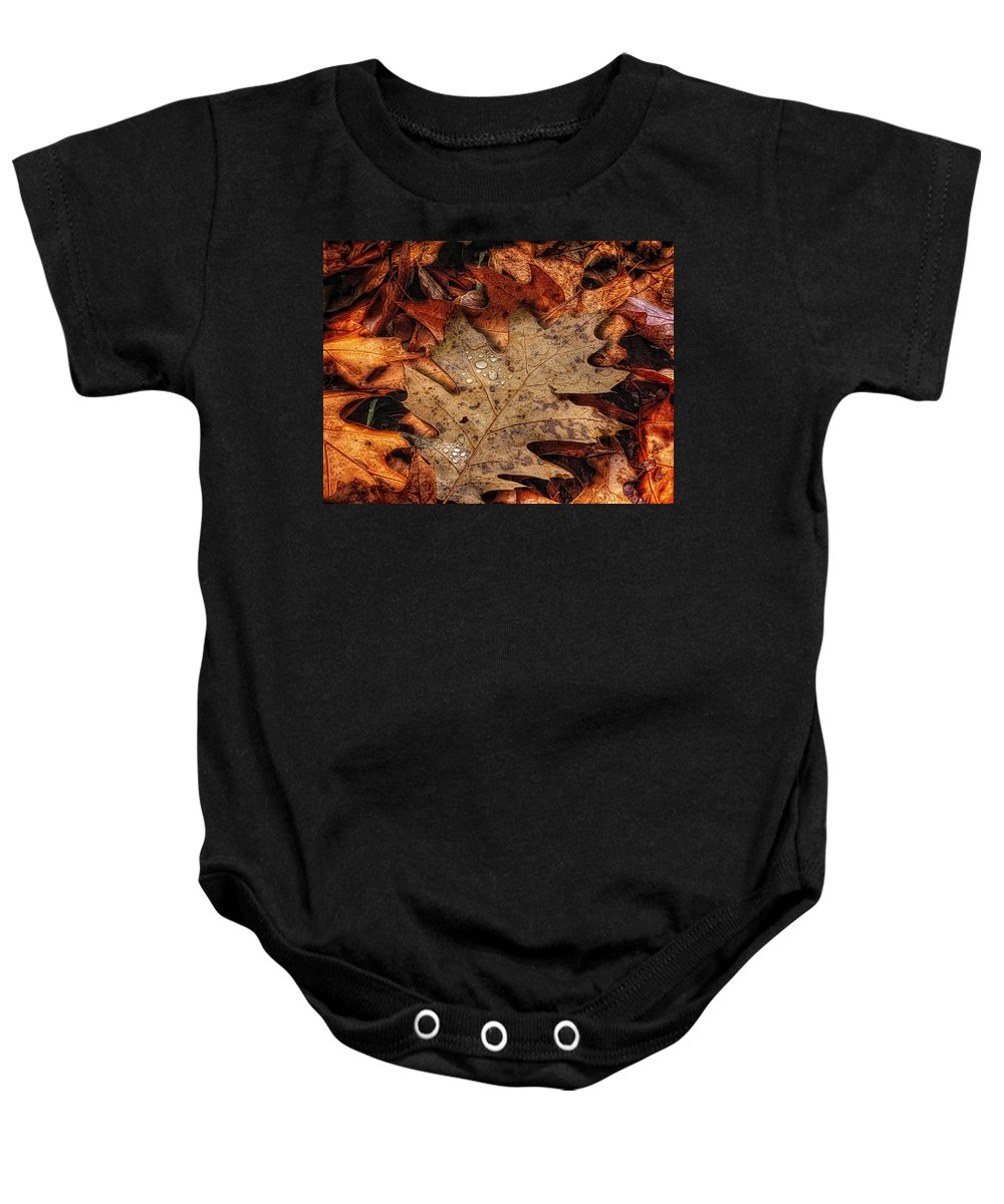 Acrylic Prints Baby Onesie featuring the photograph Oak Leaf 1 by John Herzog