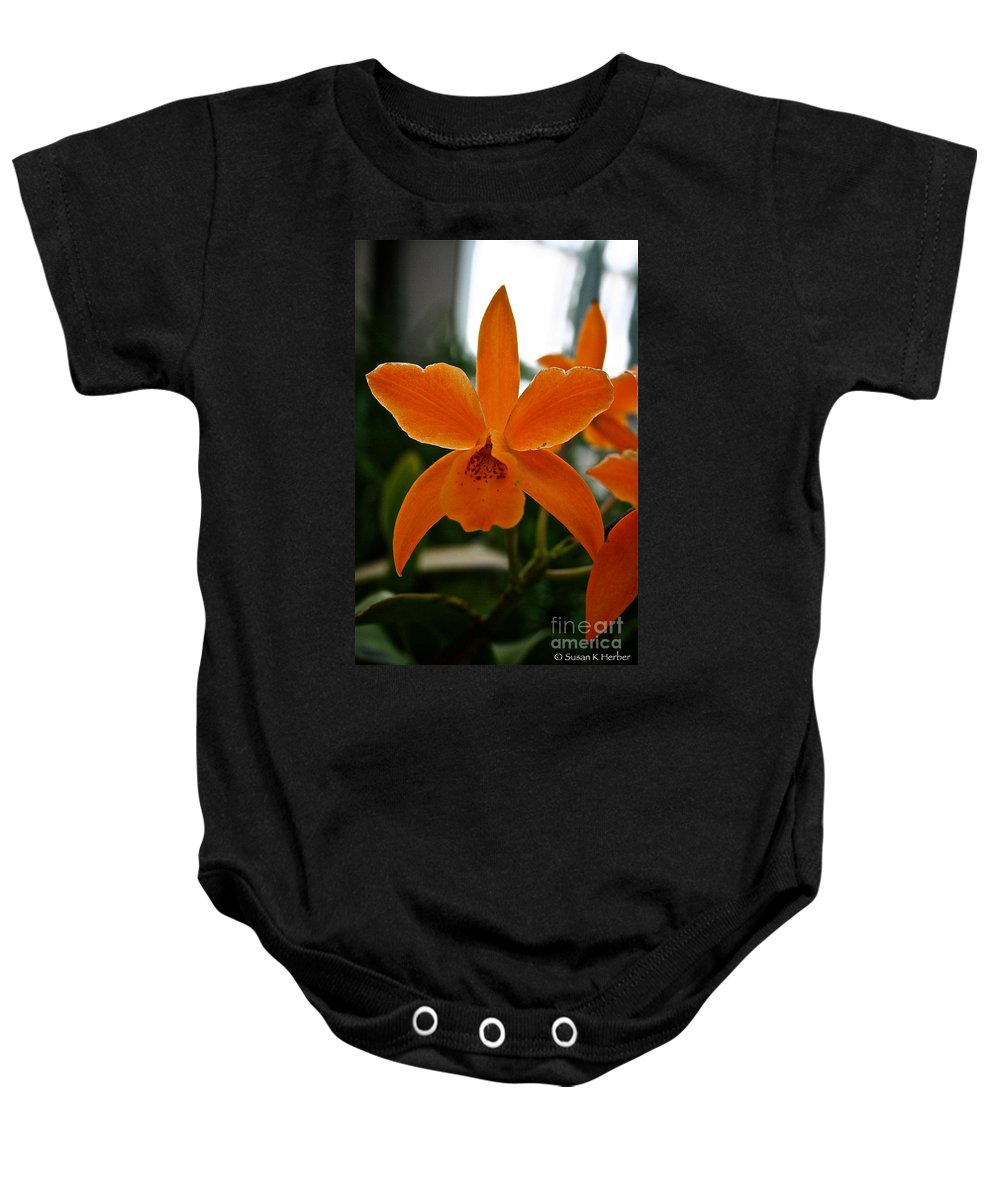 Tropical Plant Baby Onesie featuring the photograph Orange Sherbert Orchid by Susan Herber