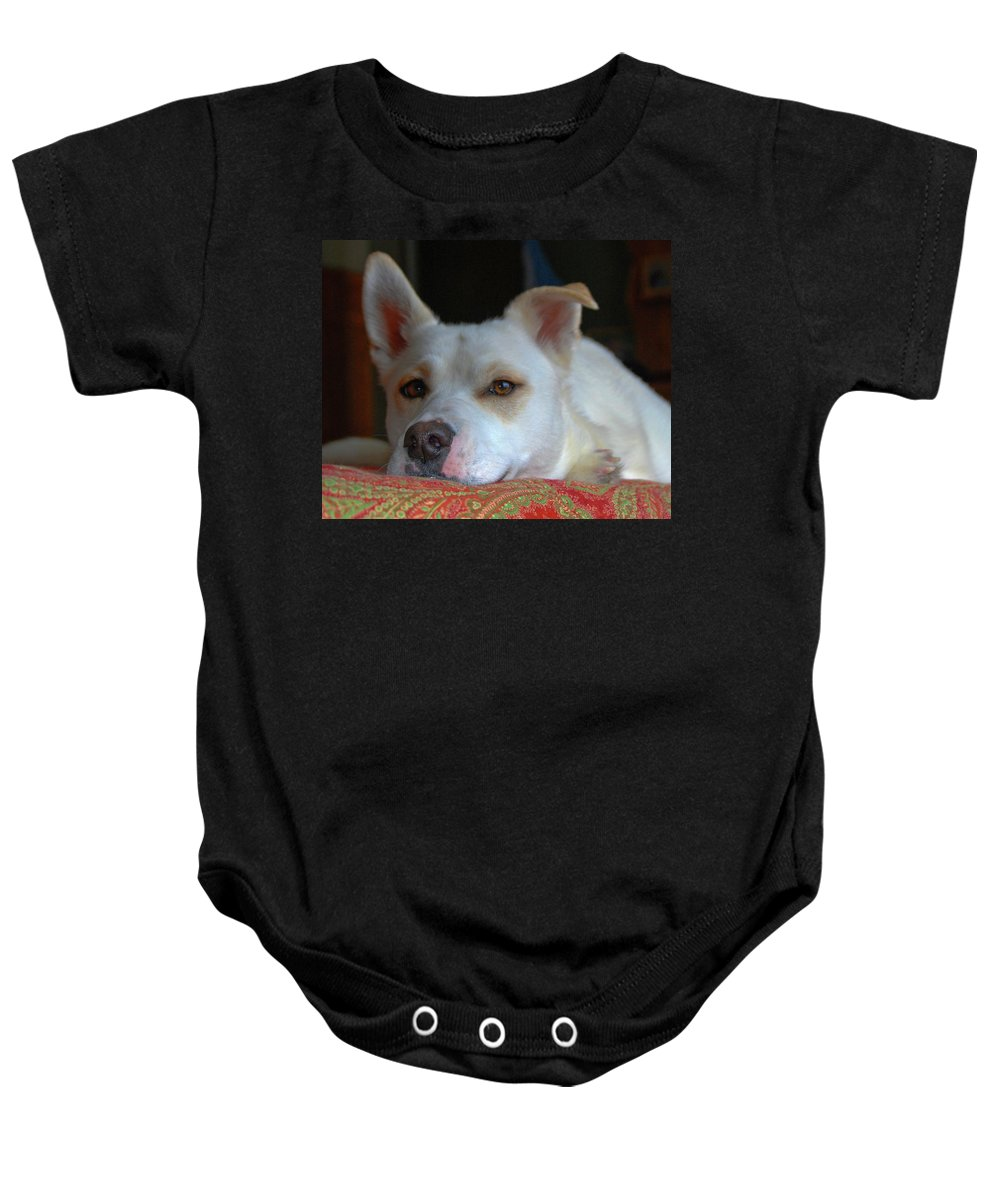 Dog Baby Onesie featuring the photograph Orvis 0242 by Guy Whiteley
