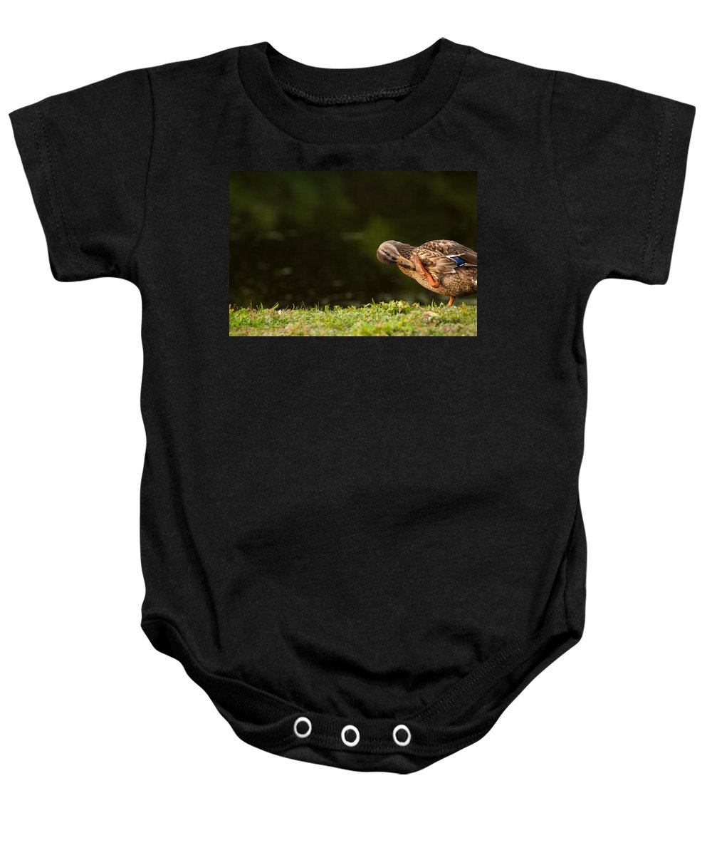 Duck Baby Onesie featuring the photograph Ouch What Did I Step On by Karol Livote