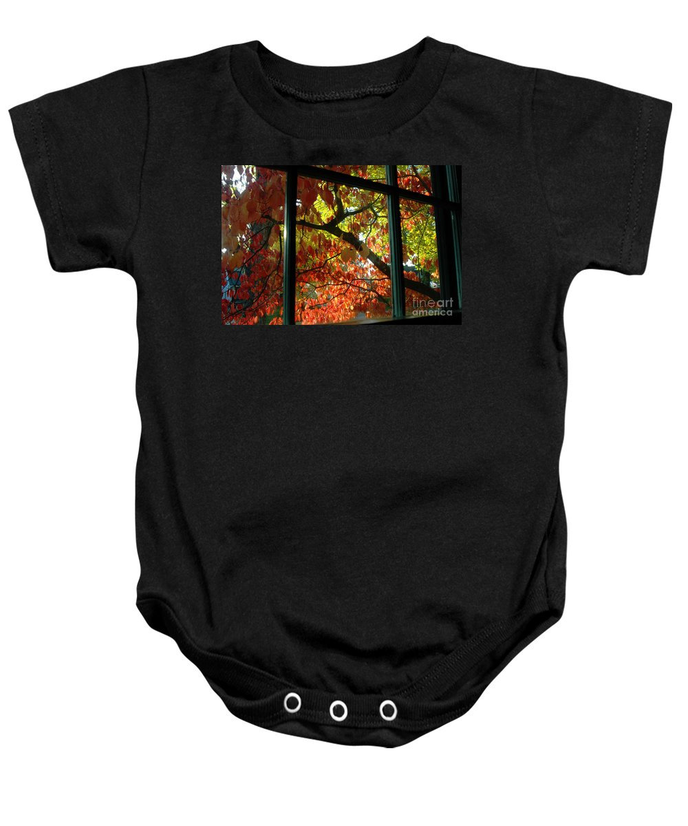 Leaves Baby Onesie featuring the photograph Pane Frames by Trish Hale