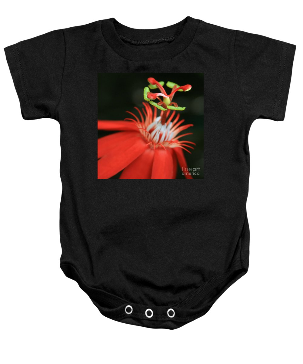 Aloha Baby Onesie featuring the photograph Passiflora Vitifolia - Scarlet Red Passion Flower by Sharon Mau