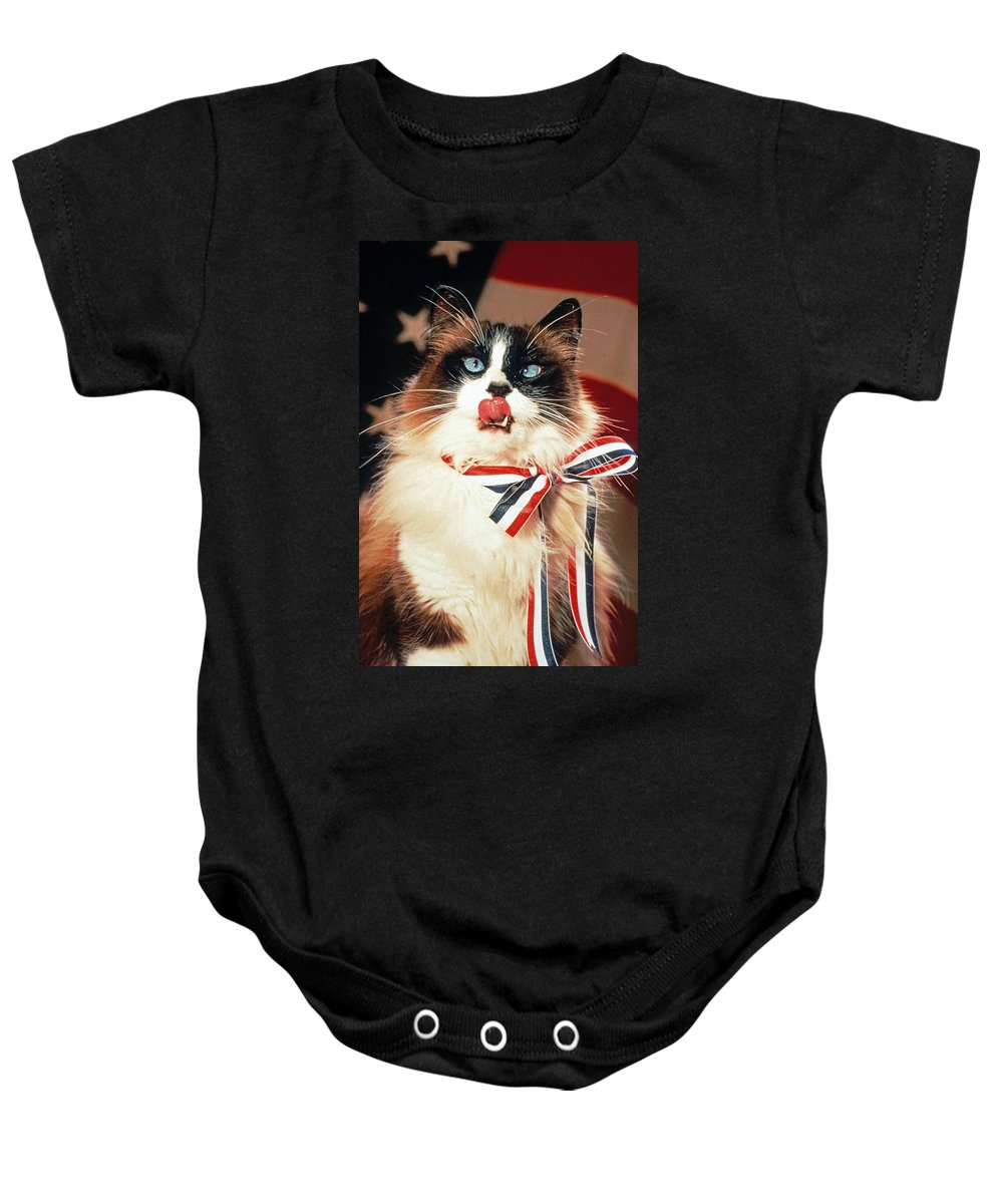 Ragdoll Cat Baby Onesie featuring the photograph Patriotic American Ragdoll by Larry Allan