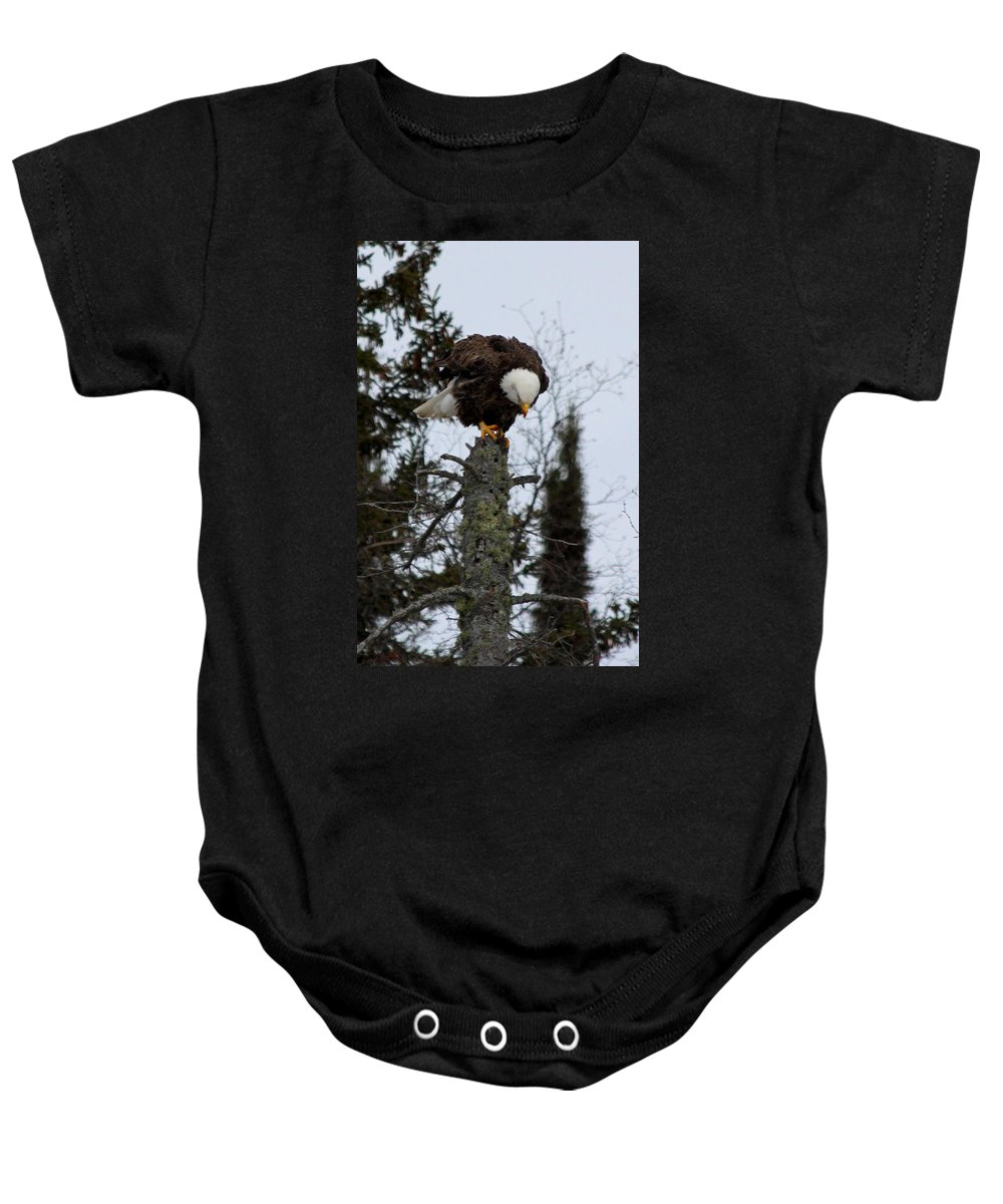 Baby Onesie featuring the photograph Perch by Joi Electa