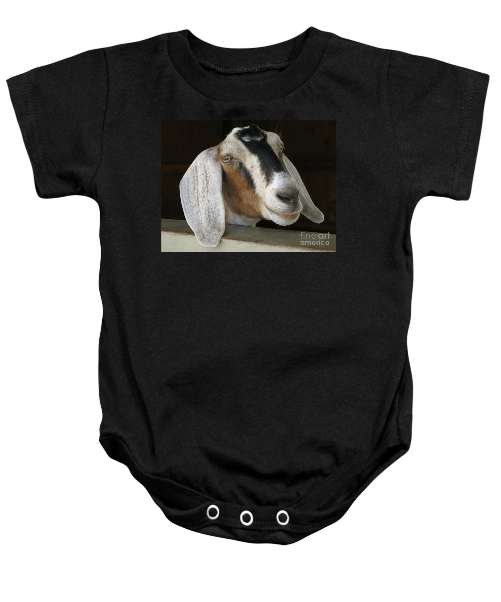 Goat Baby Onesie featuring the photograph Photogenic Goat by Ann Horn