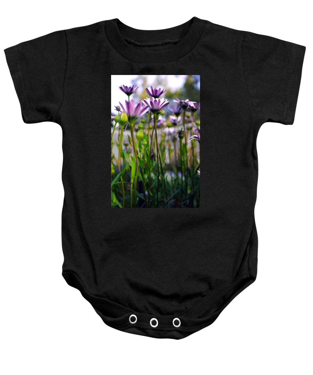 Pink Flowers Baby Onesie featuring the photograph Pink Blossoming Flowers by Sumit Mehndiratta