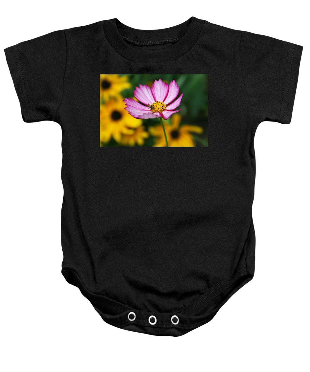Cosmos Baby Onesie featuring the photograph Pink Cosmos Picotee And Bee by Kathy Clark