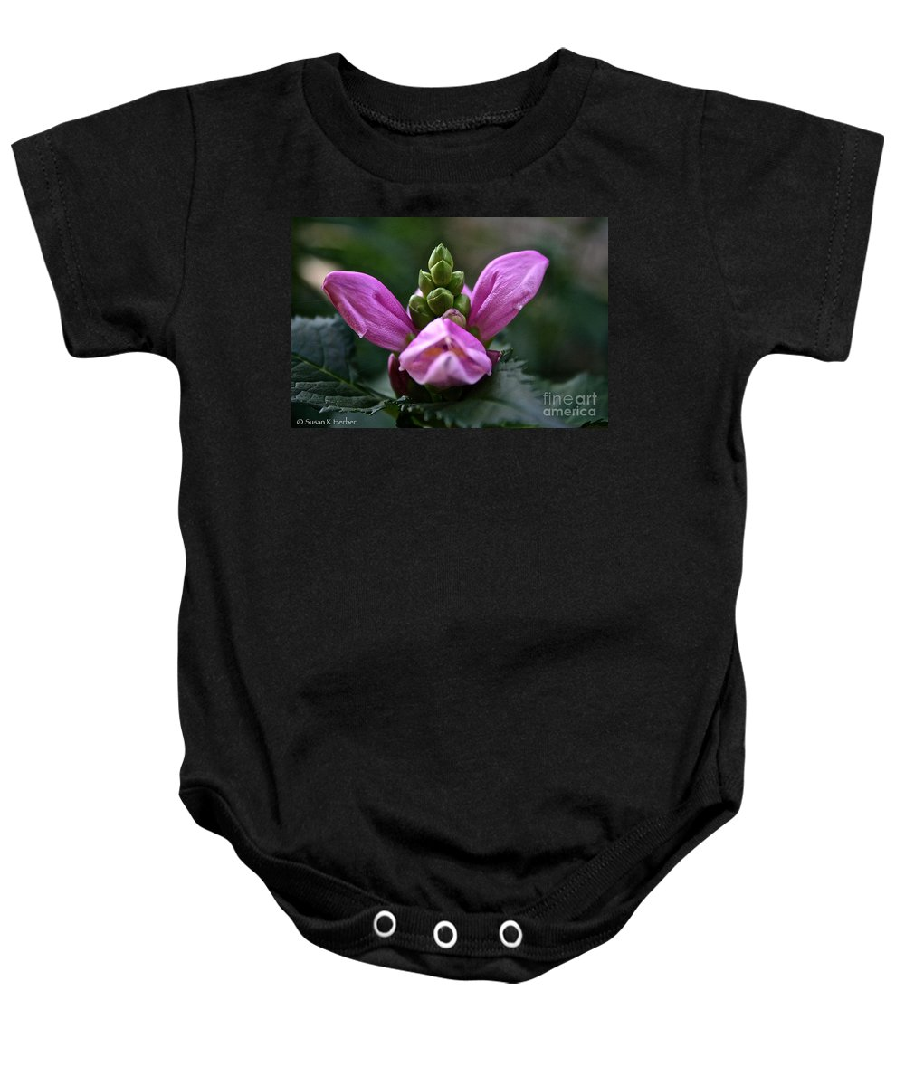 Outdoors Baby Onesie featuring the photograph Pink Turtlehead by Susan Herber