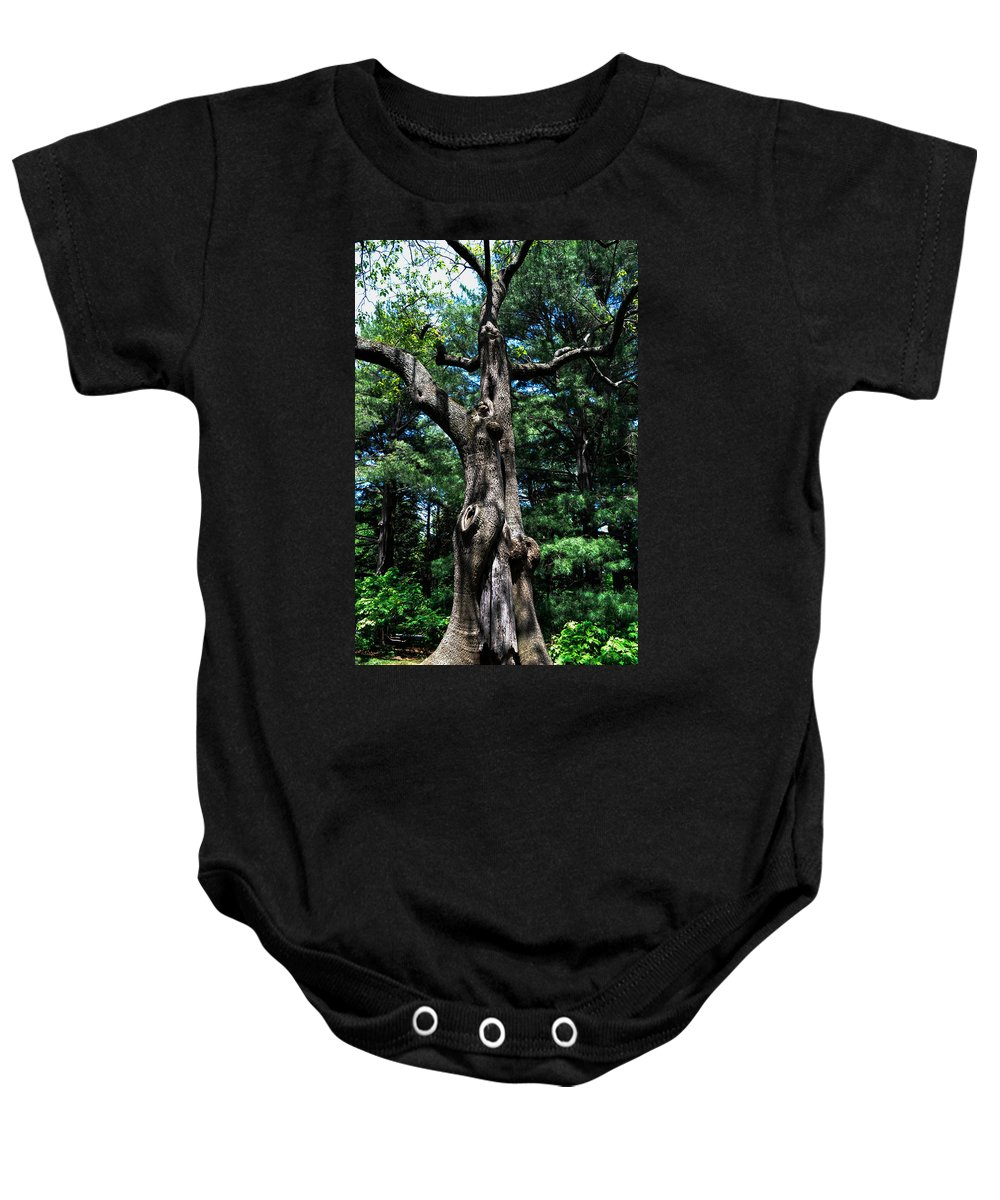 Trees Baby Onesie featuring the photograph Princess Tree by Wanda J King