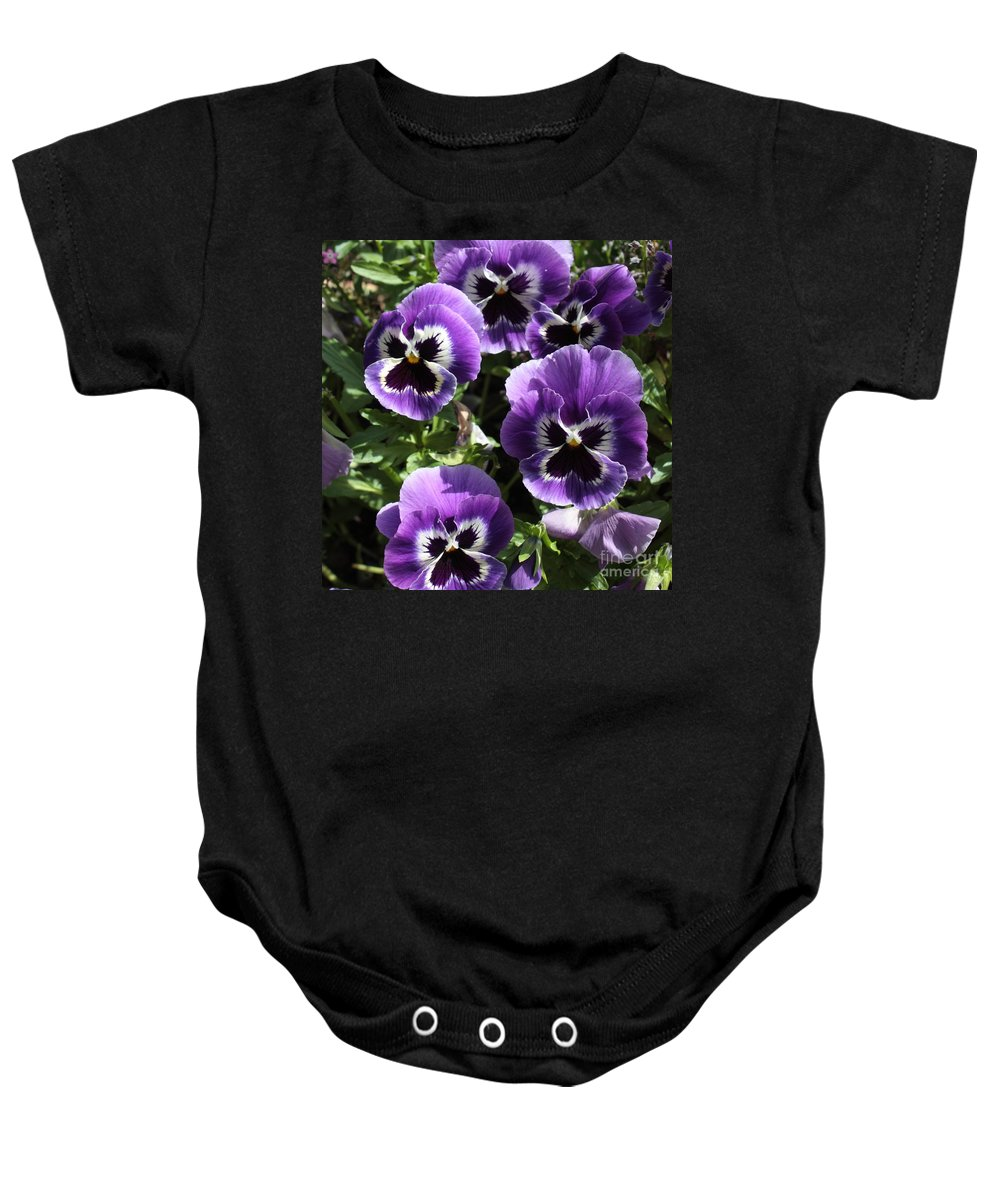 Pansy Baby Onesie featuring the photograph Purple Pansies Square by Carol Groenen