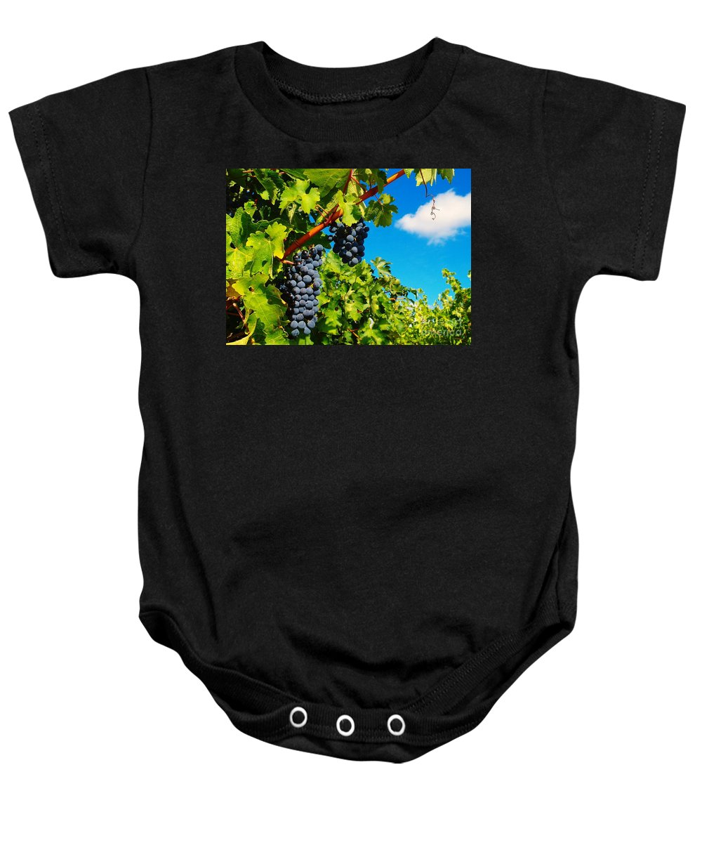 Wine Baby Onesie featuring the photograph Ready For Harvest by Jeff Swan