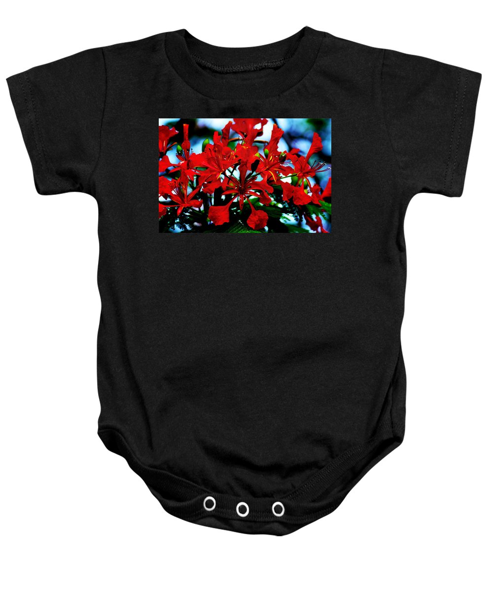 Red Beauty Baby Onesie featuring the photograph Red Beauty by Bill Cannon