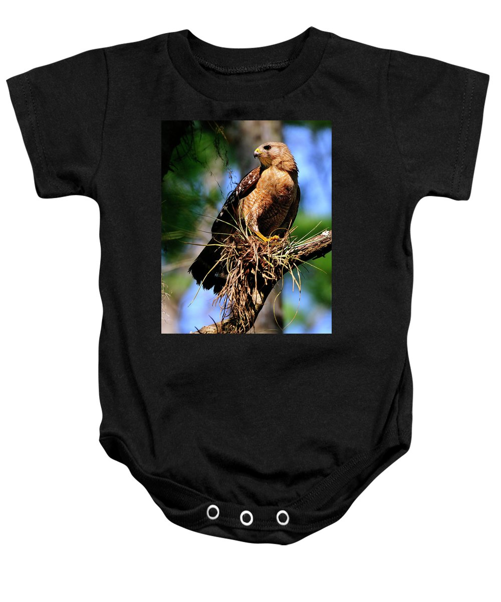 Red-shouldered Baby Onesie featuring the photograph Red-shouldered Hawk by Bill Dodsworth