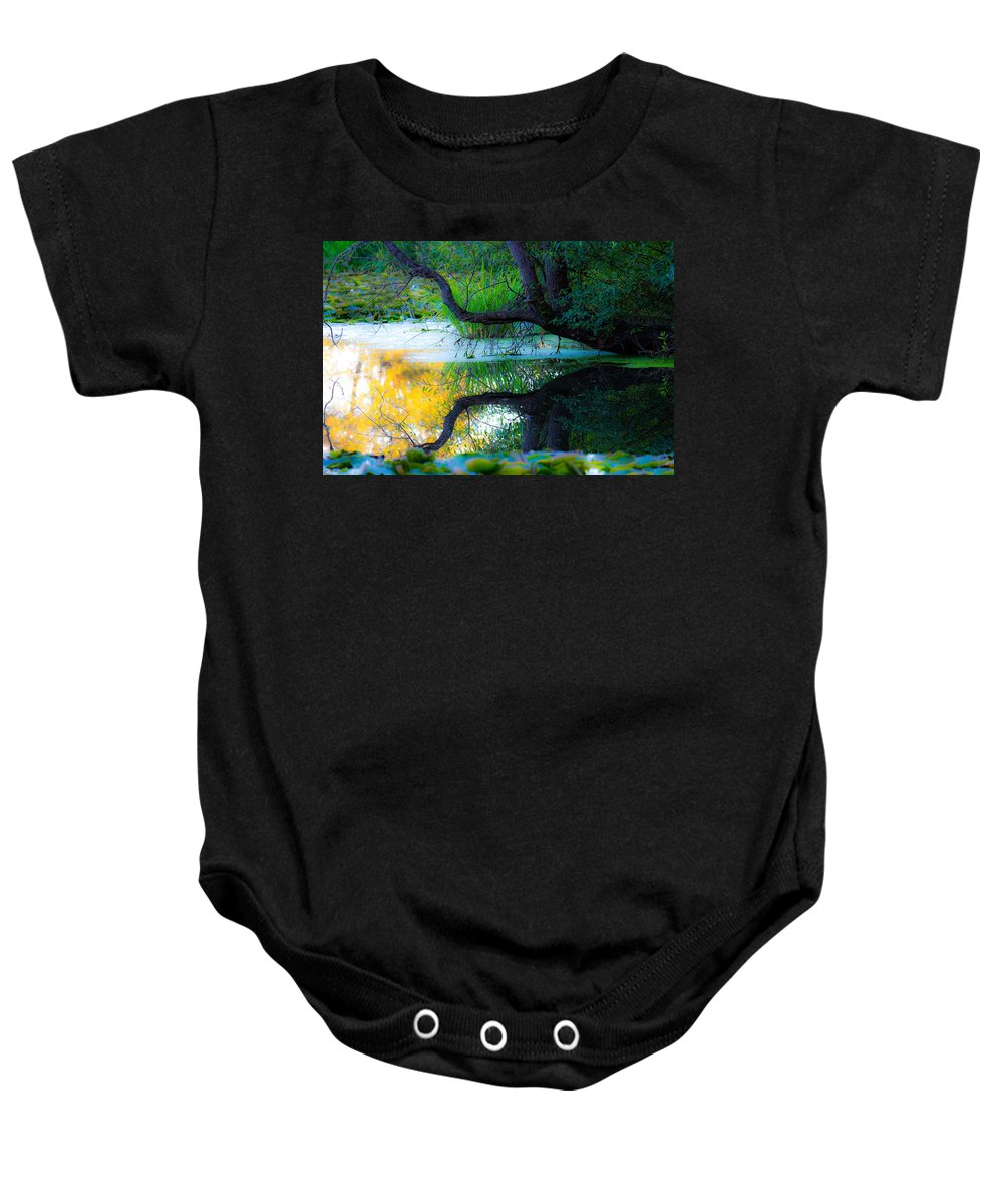 Reflections Baby Onesie featuring the photograph Reflected Tree In Pastel Landscape by Marie Jamieson