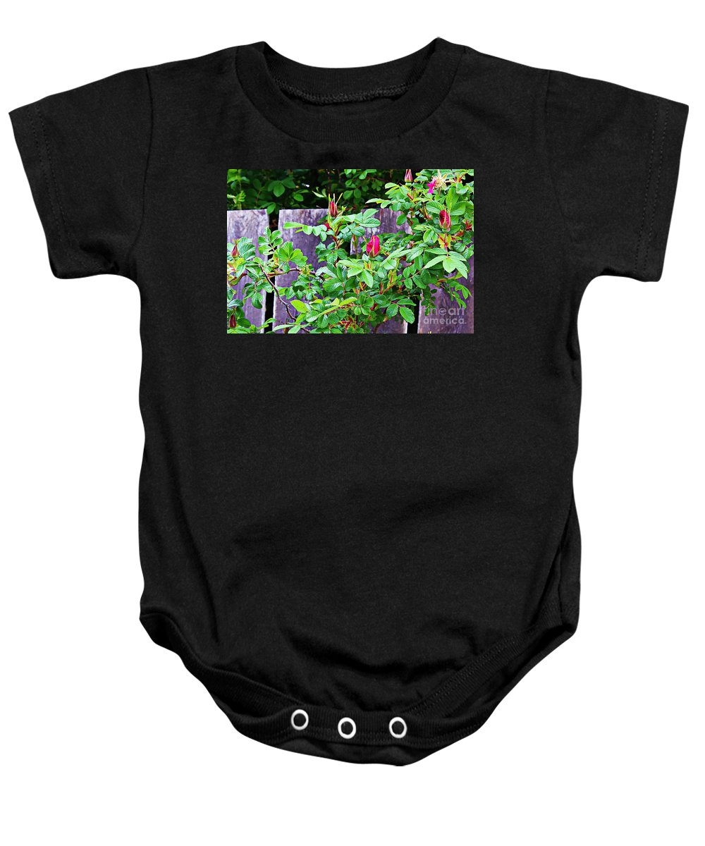 Rosebuds Baby Onesie featuring the photograph Resting Rosebuds Enhanced by Barbara Griffin