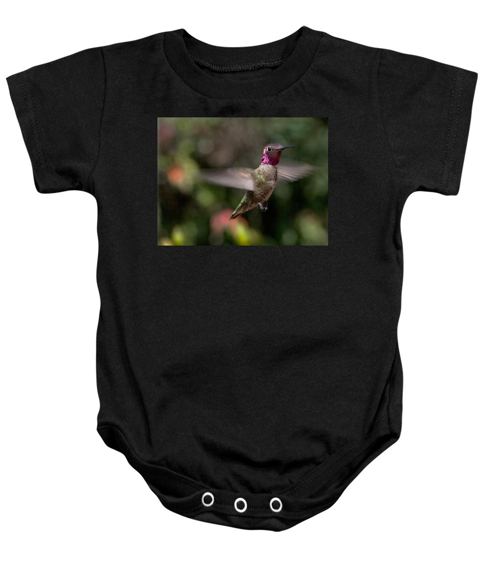 male Anna's Hummingbird Hummingbird ruby Chin Painting Bokeh Baby Onesie featuring the photograph Ruby by Mike Herdering