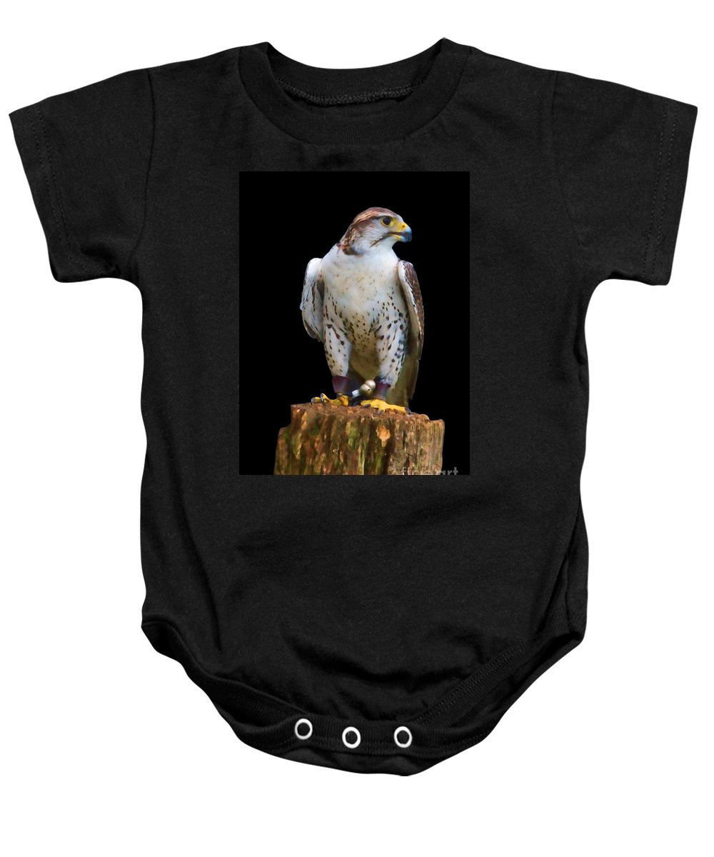 Saker Falcon Baby Onesie featuring the photograph Saker Falcon by Sheila Laurens