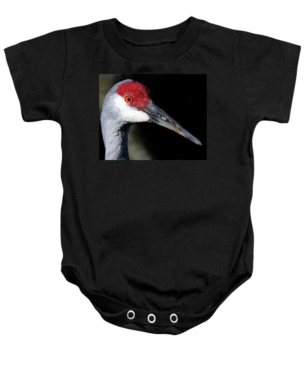 Sandhill Baby Onesie featuring the photograph Sandhill Cranes Close Up by Bill Dodsworth