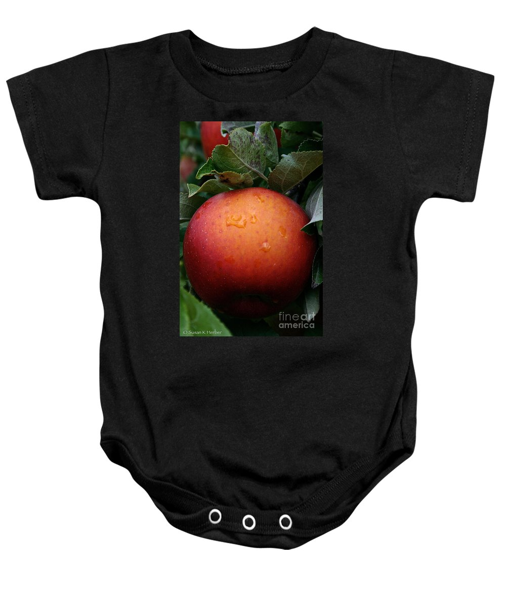 Landscape Baby Onesie featuring the photograph Satisfaction Guaranteed by Susan Herber
