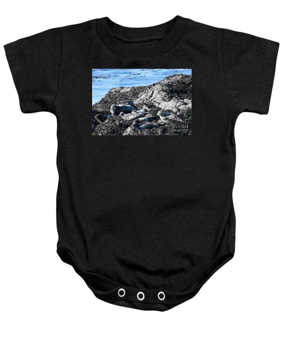 Sea Lions Baby Onesie featuring the photograph Sea Lions In Alaska by Pamela Walrath