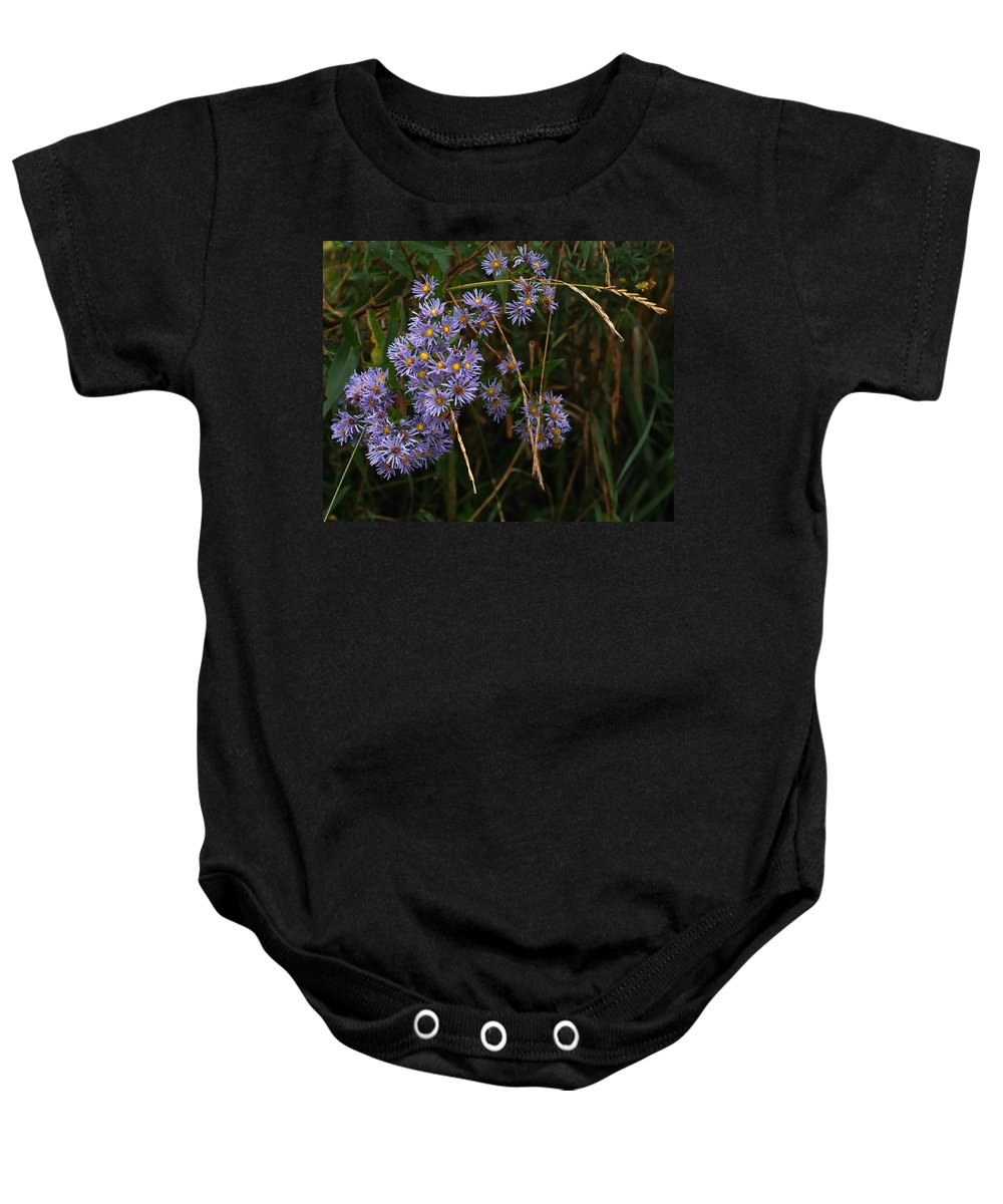 Nature Baby Onesie featuring the photograph Seasonal Blues by Susan Capuano