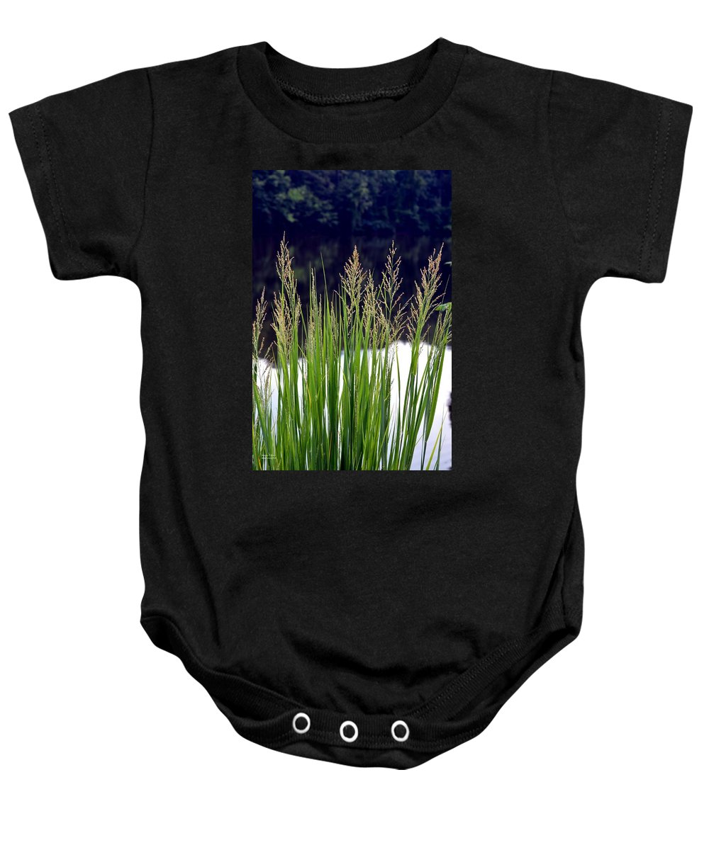 Seeds Baby Onesie featuring the photograph Seedy Grass by Maria Urso