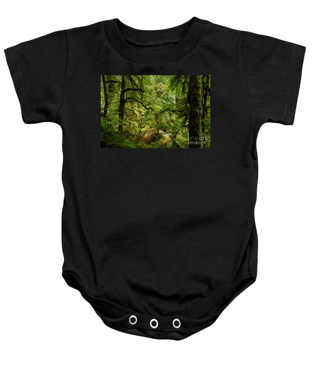 Silver Falls State Park Baby Onesie featuring the photograph Silver Falls Rainforest by Adam Jewell