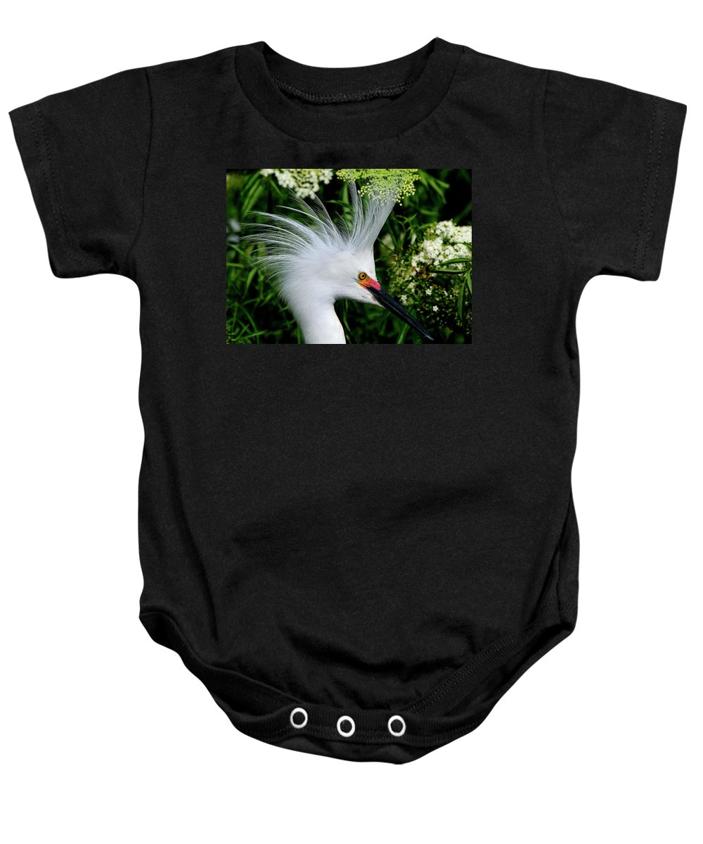 Snowy Baby Onesie featuring the photograph Snowy Egret With Breeding Plumage by Bill Dodsworth