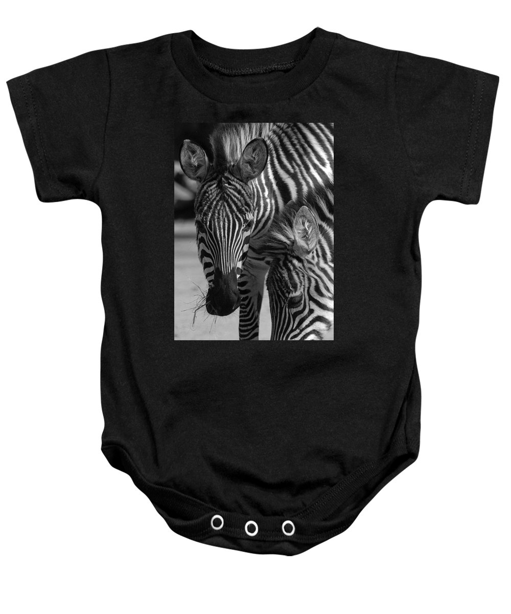 Stripes Baby Onesie featuring the photograph Stripes - Zebra by D'Arcy Evans