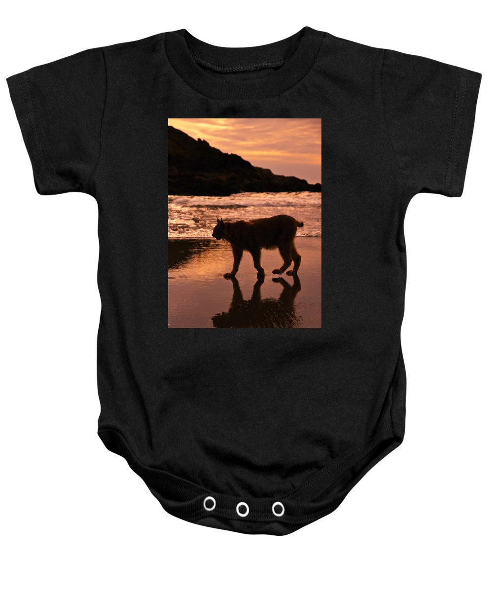 Sunset Stroll Baby Onesie featuring the photograph Sunset Stroll by Wes and Dotty Weber