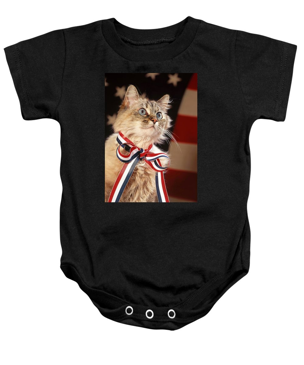 Mixed Breed Cat Baby Onesie featuring the photograph Sweet And Patriotic by Larry Allan
