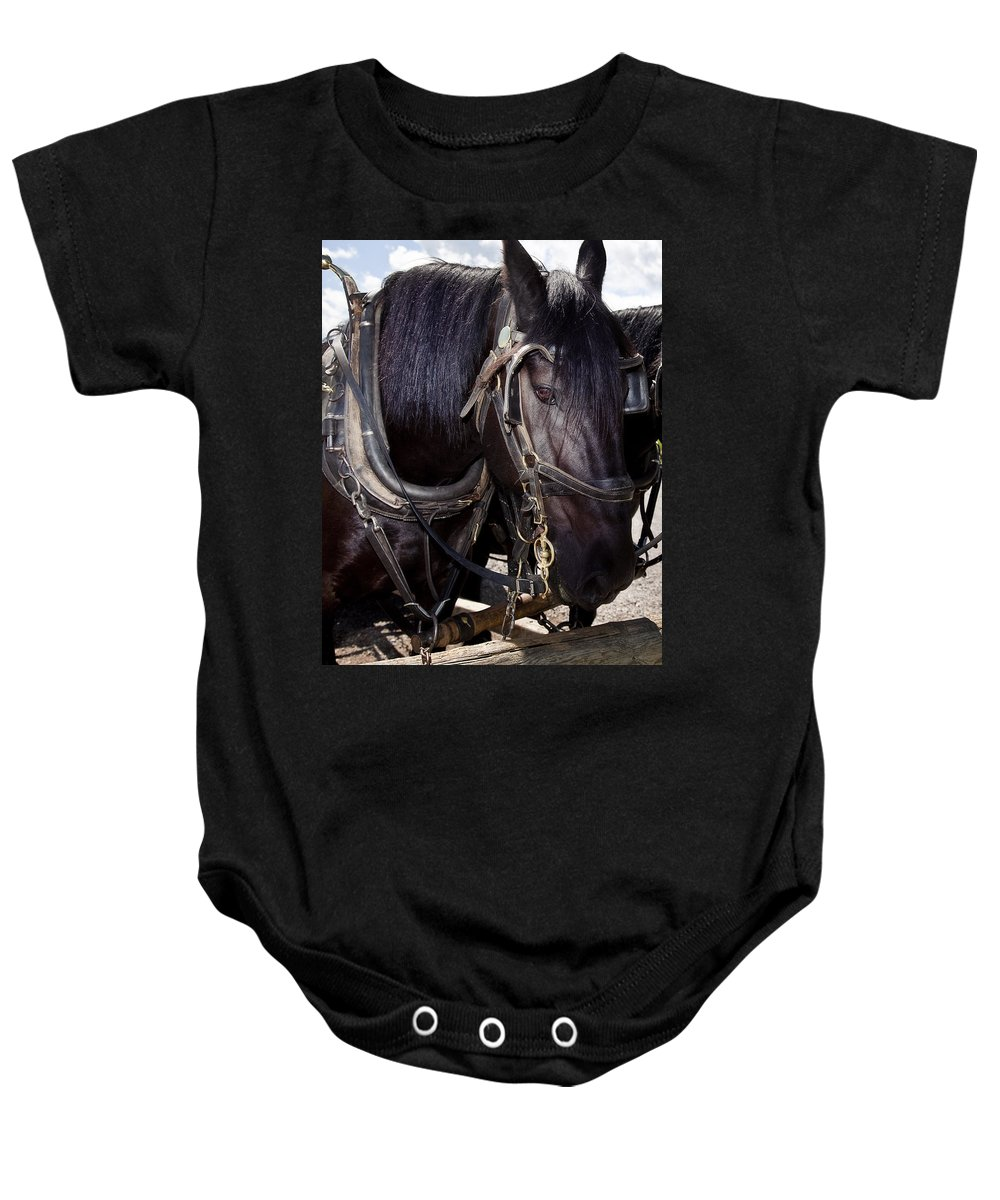 Horse Baby Onesie featuring the digital art The Look by Diane Dugas