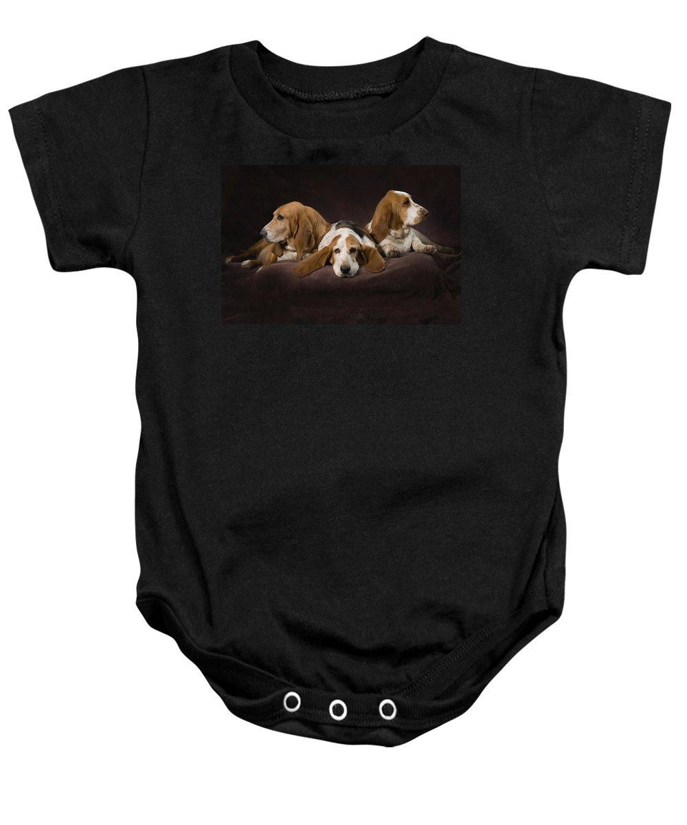 Blonde Baby Onesie featuring the photograph Three Basset Hound On Brown Muslin by Corey Hochachka
