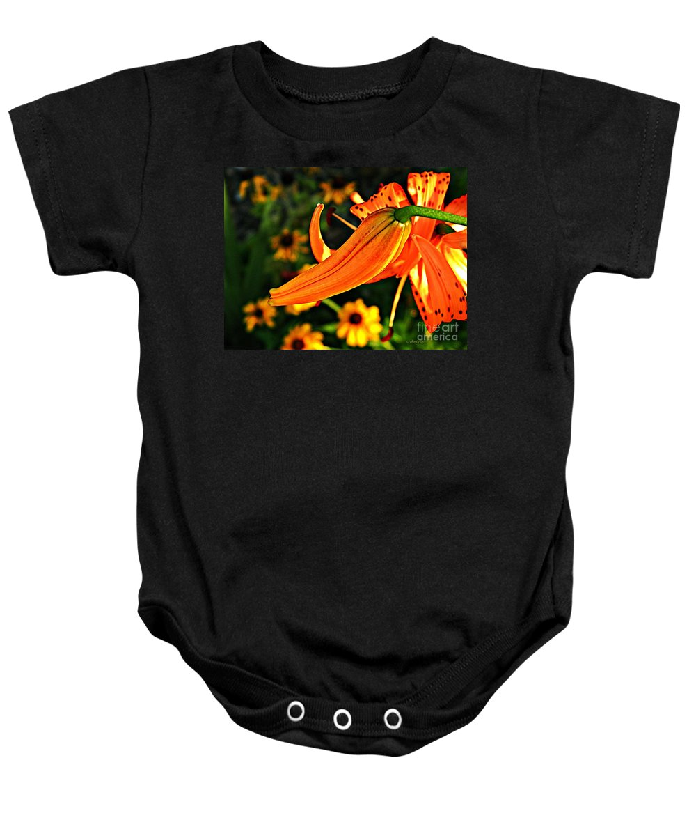 Nature Baby Onesie featuring the photograph Tiger Lily Bud And Bloom by Chris Berry
