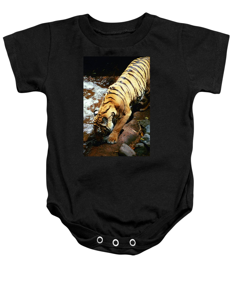 Baby Onesie featuring the photograph Time For A Drink by Michael Frank Jr