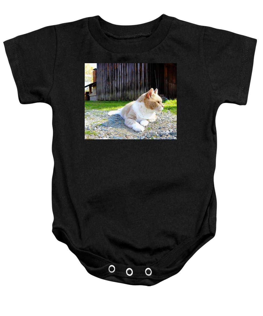 Cat Baby Onesie featuring the photograph Toby Old Mill Cat by Sandi OReilly