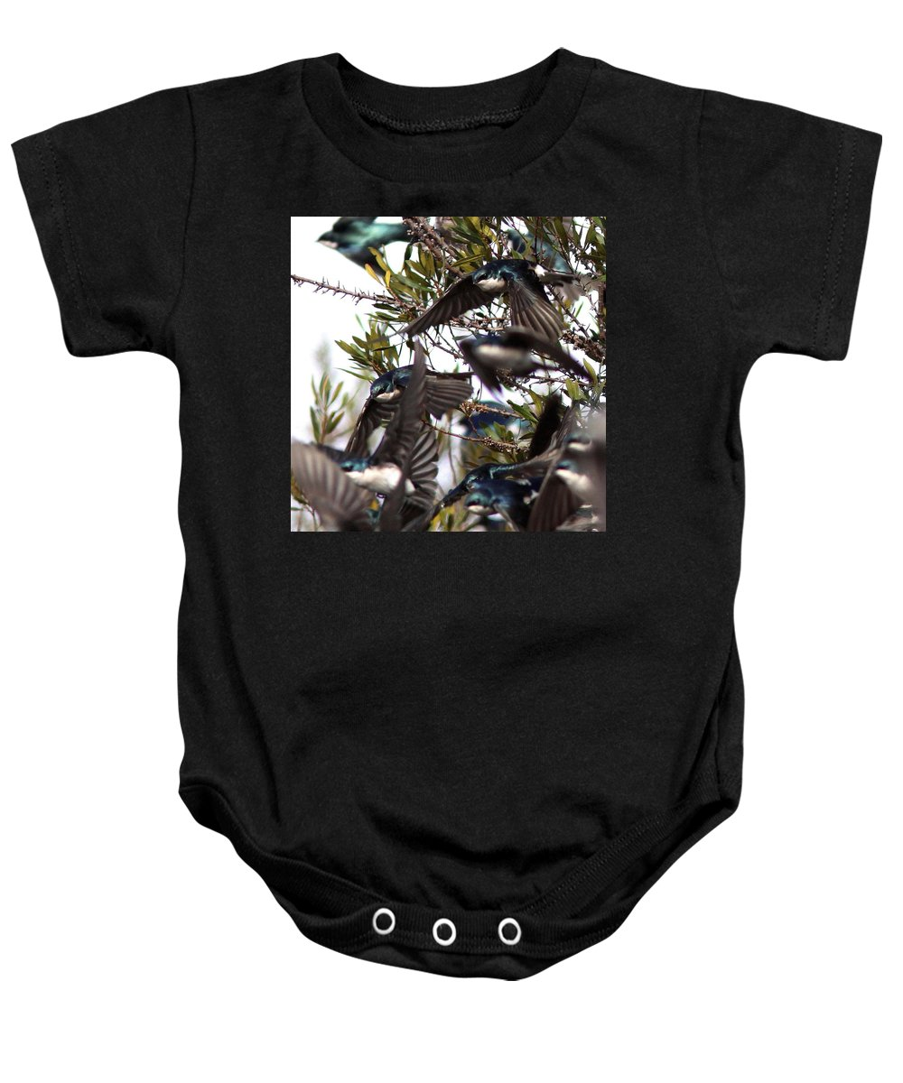 Flock Baby Onesie featuring the photograph Tree Swallow - All Swallowed Up by Travis Truelove