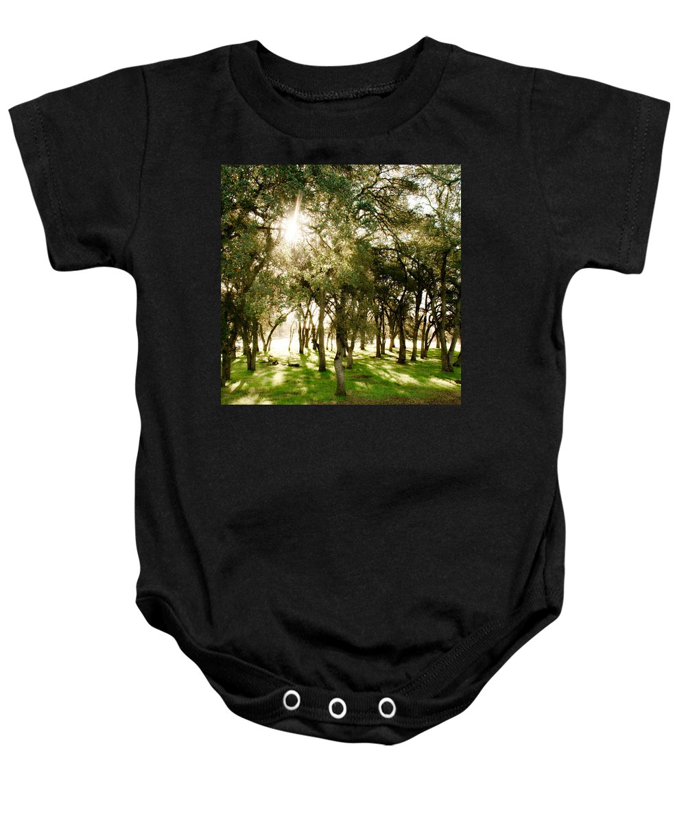 Trees Baby Onesie featuring the photograph Trees by Sally Bauer
