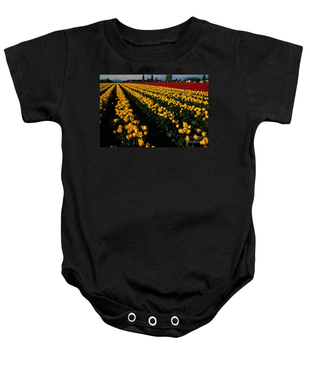 Tulips Baby Onesie featuring the photograph Tulip Fields Forever by Bob Christopher