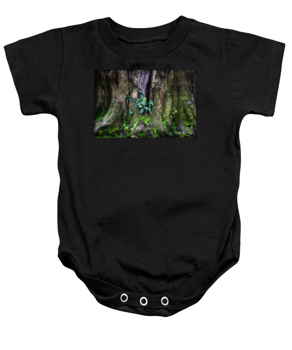 San Francisco Baby Onesie featuring the photograph Velvet Ivy by Doug Sturgess