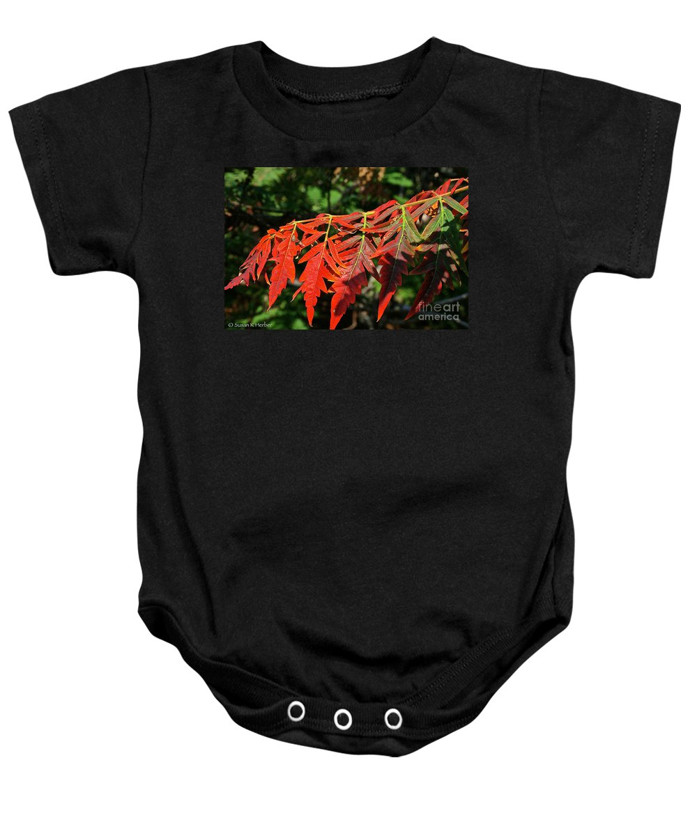 Outdoors Baby Onesie featuring the photograph Vibrant Sumac by Susan Herber