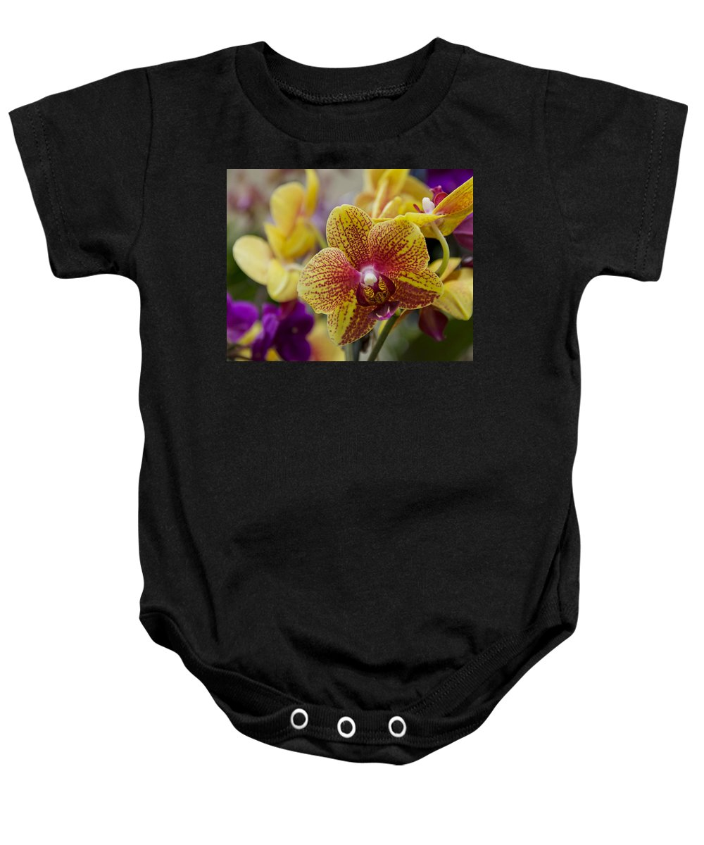 Exotic Baby Onesie featuring the photograph Walking On Sunshine by Angelina Vick