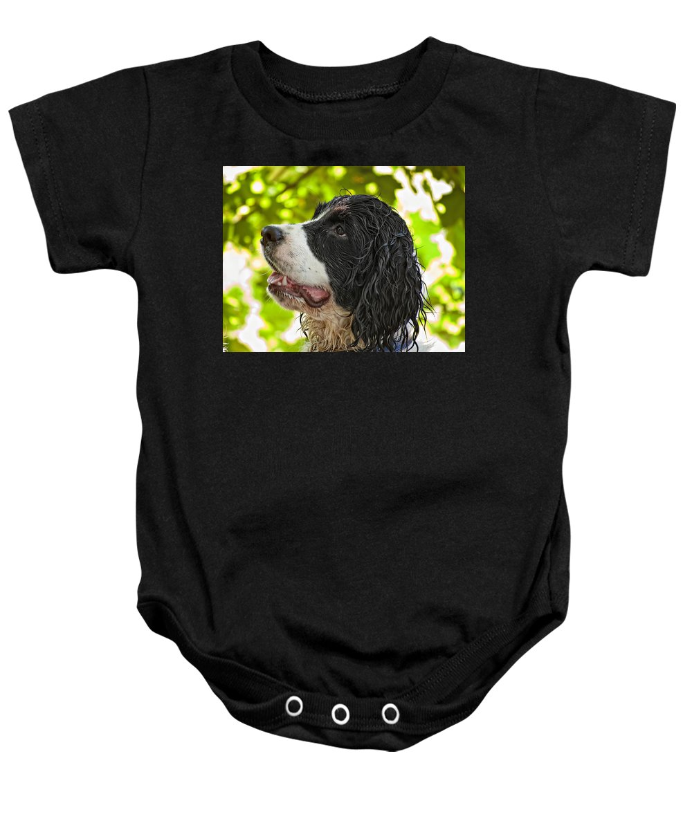 Spaniel Baby Onesie featuring the photograph Wet Puppy 2 by Steve Harrington