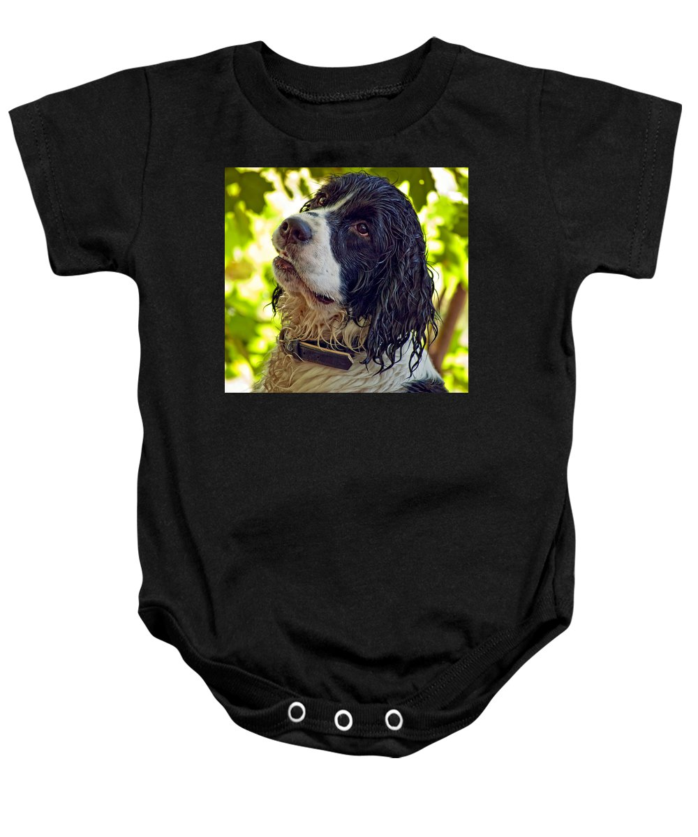 Spaniel Baby Onesie featuring the photograph Wet Puppy by Steve Harrington