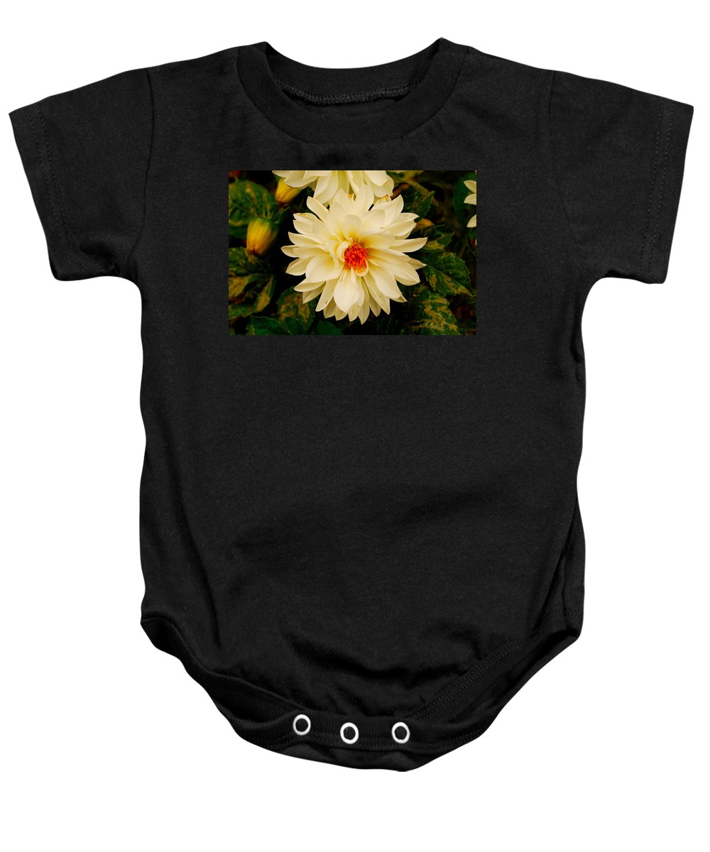 White Baby Onesie featuring the photograph White Flower by Christofer Johnson