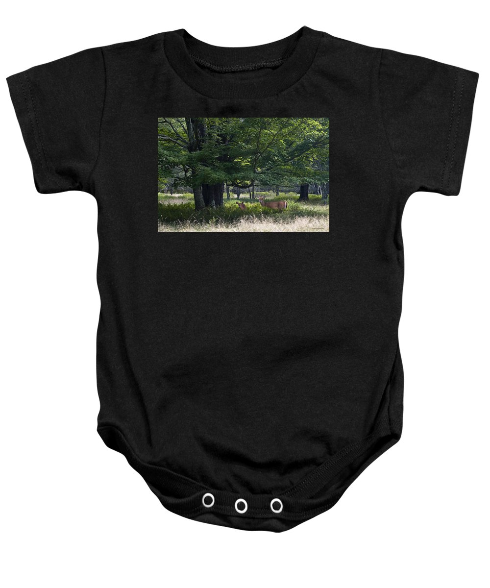 Wildlife Baby Onesie featuring the photograph White Tail Deer by Ron Jones