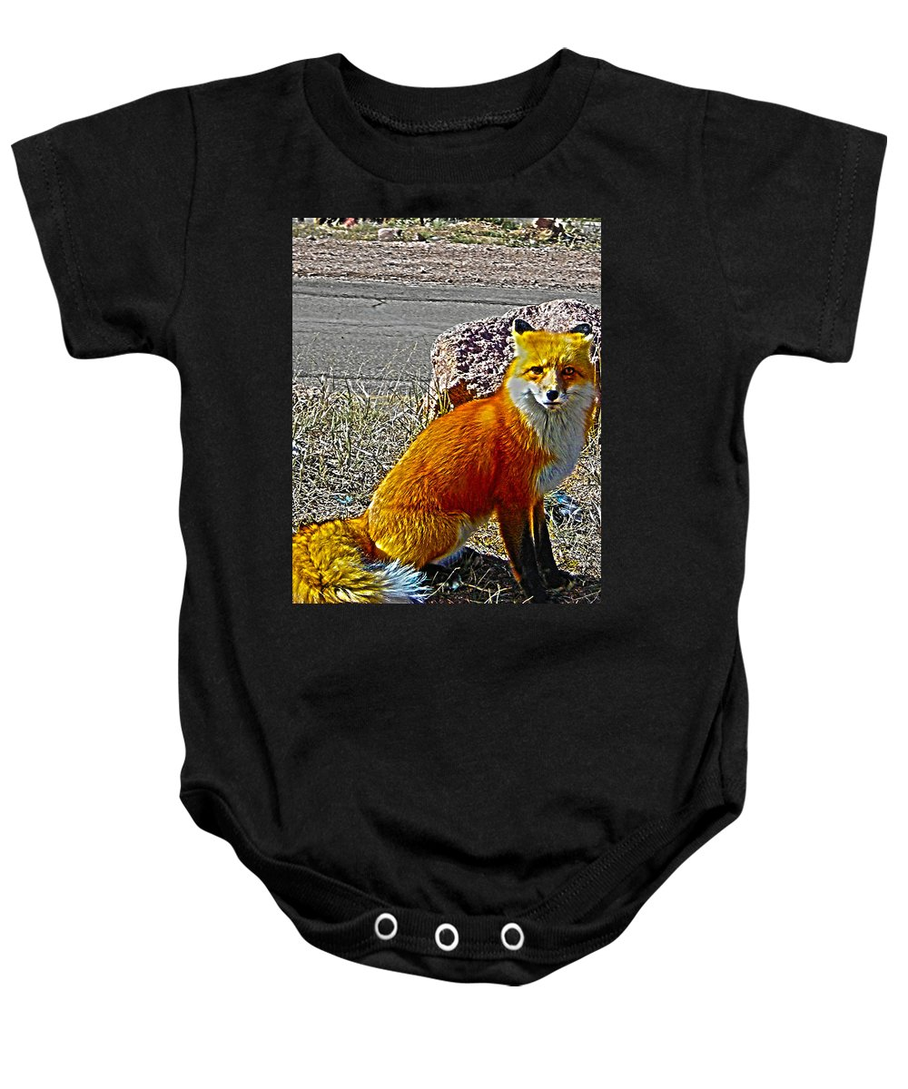 Fox Baby Onesie featuring the photograph Wilbur by Shannon Harrington