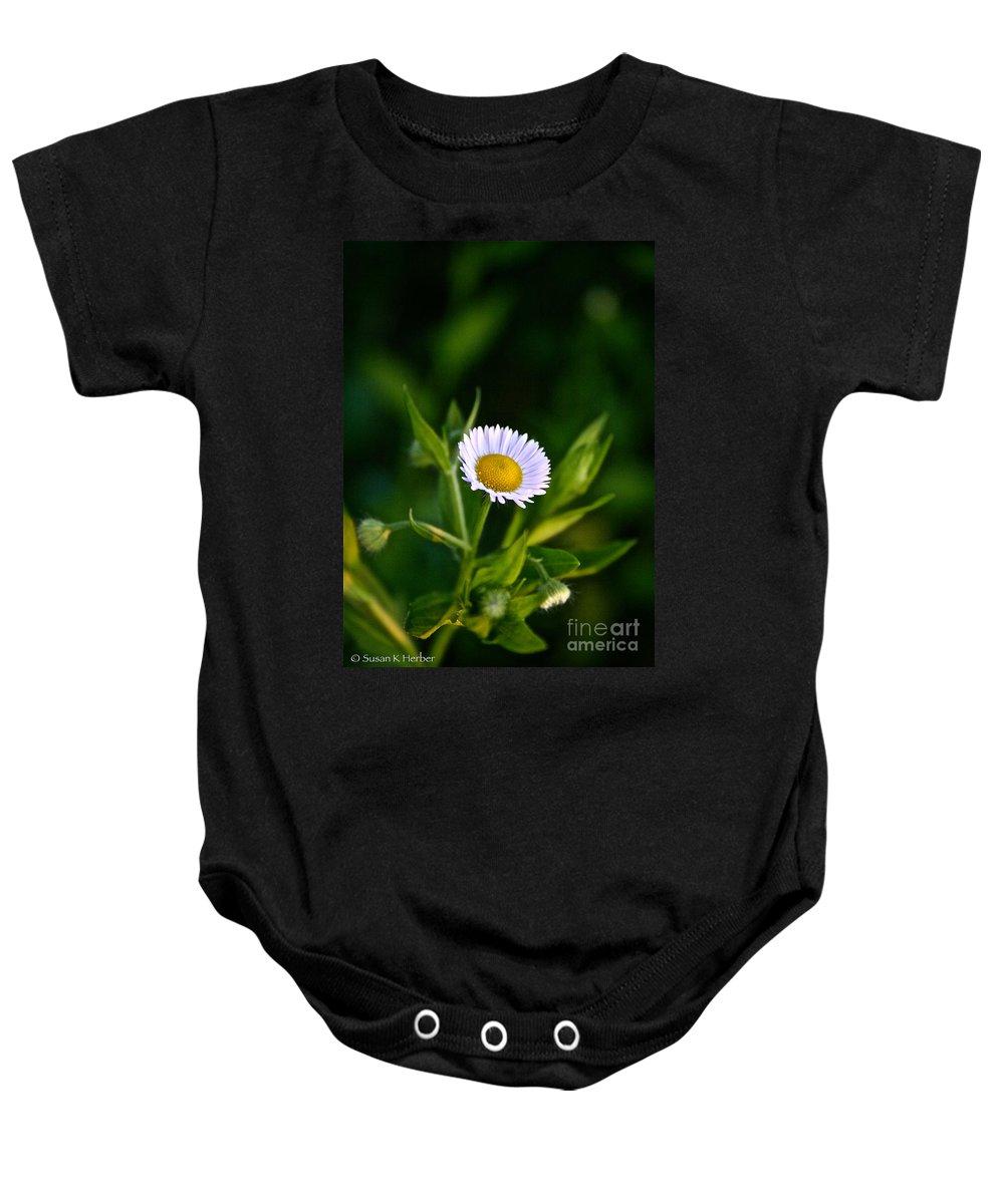 Garden Baby Onesie featuring the photograph Wild Daisy by Susan Herber