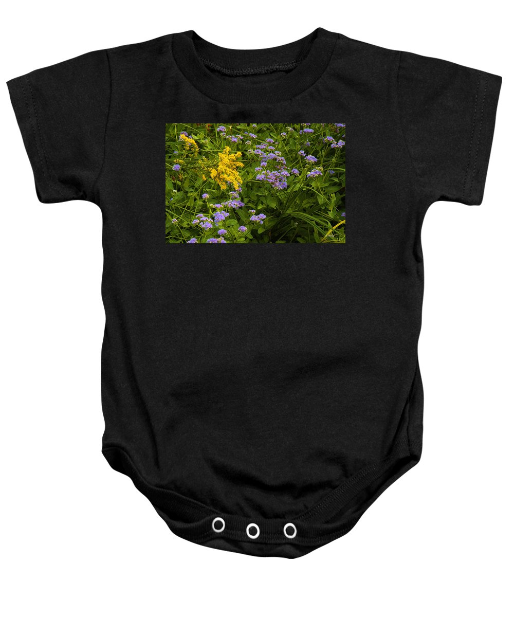 Roena King Baby Onesie featuring the photograph Yellow And Violet Flowers by Roena King